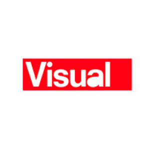 visual-logo
